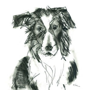 sheppy, border collie - card & print