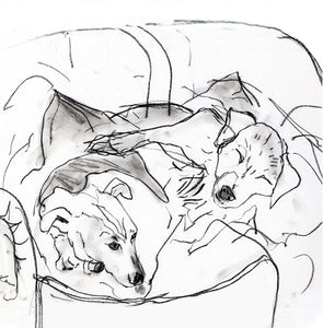 sleeping dogs, jack russels - card