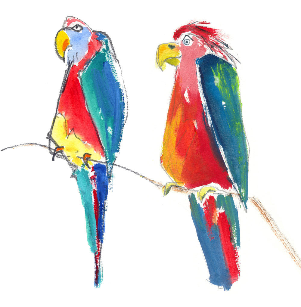 two parrots - card & print