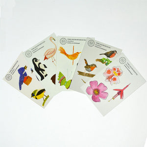 Set Stickers Aves I (3554649866312)