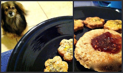 baking cookies for you and your dog barking princess blog photo