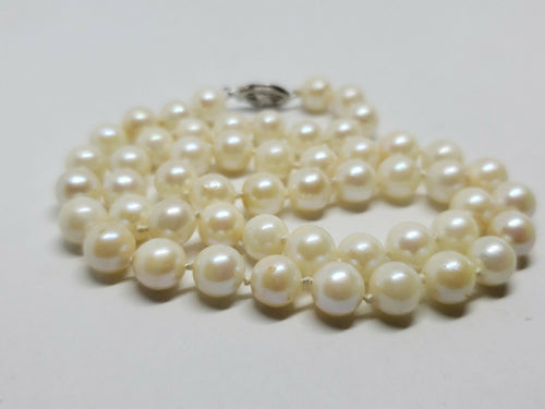 10k White Gold 6.5mm Japanese Ayoka Ivory Tone Pearl Necklace Filigree Clasp