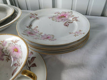 Vintage H.M.S. Royal Hanover Germany Celeste Pink Flowers Dish Set