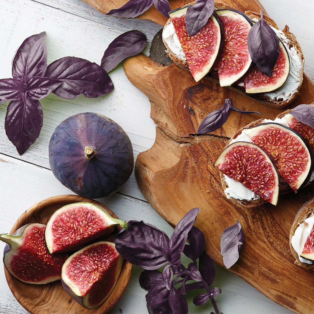 Purple Basil & Fig