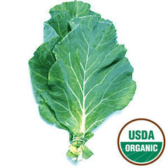 ORGANIC COLLARD GREENS FROM USA
