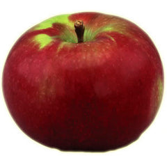 MCINTOSH APPLES FROM USA