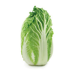 NAPA CABBAGE FROM USA