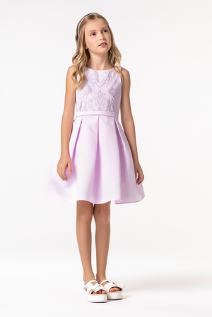 Pink Embroided Pleaded Dress