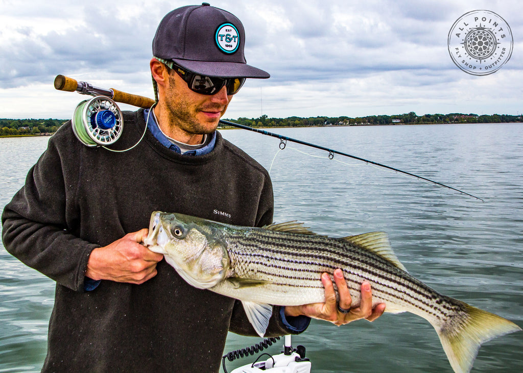 3 Tips For Striped Bass Fishing In The Fall
