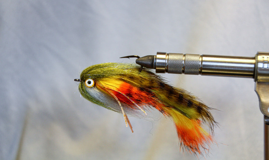 "Video: Fly Tying - The ""Double Money"" Streamer"