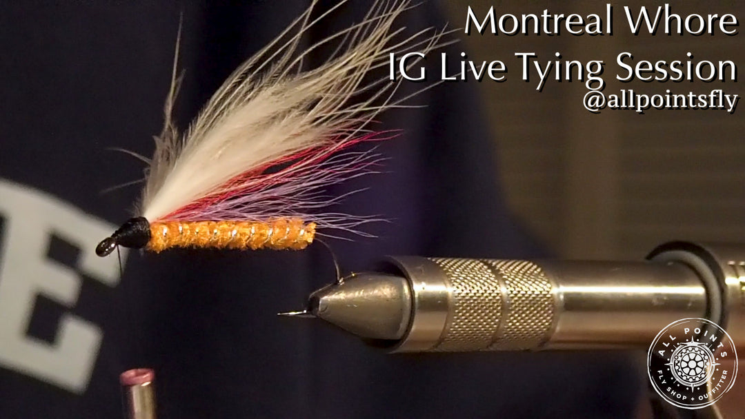 Video: IG Live Fly Tying Sessions - Montreal Whore