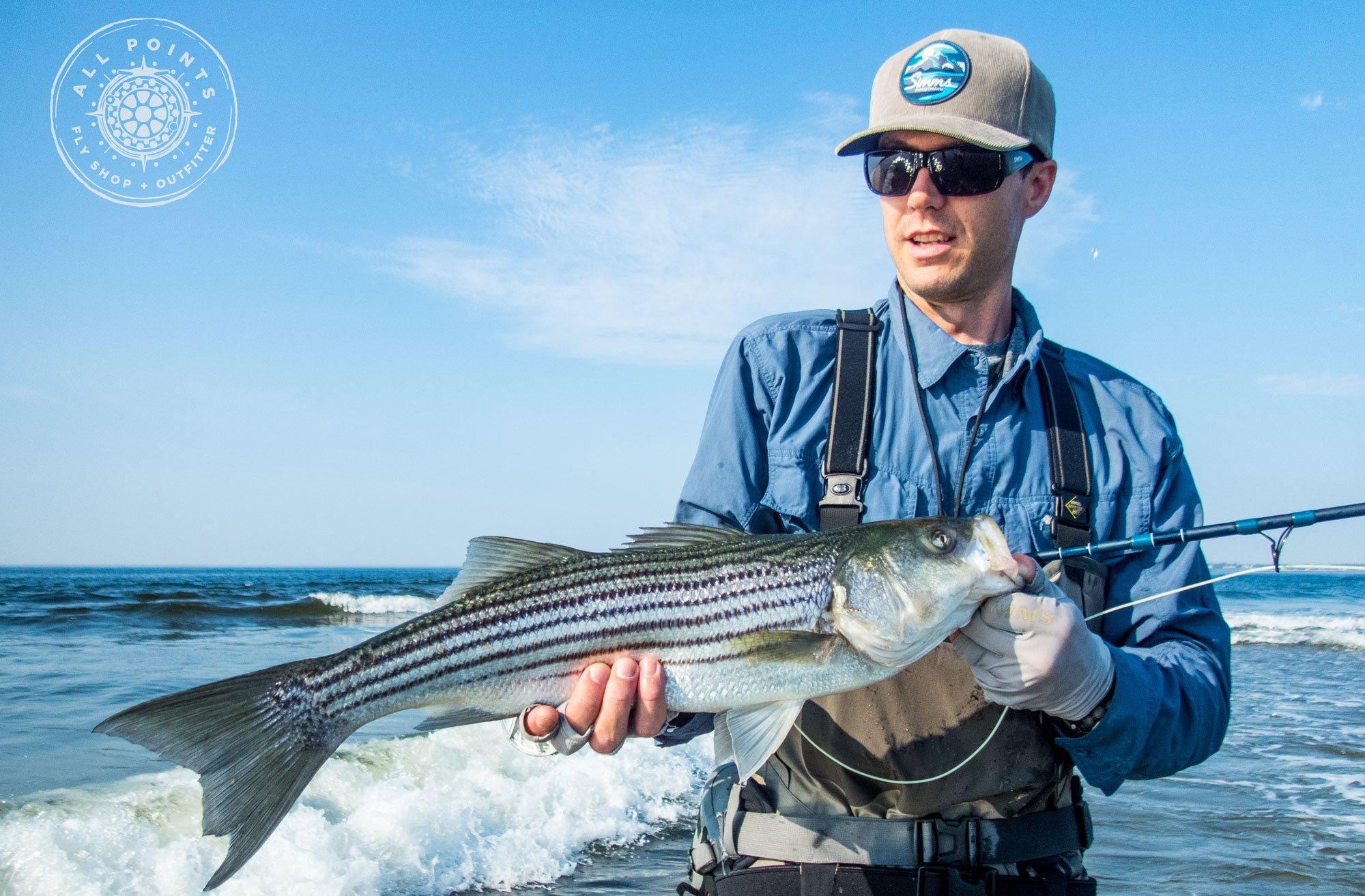 Fly Fishing Striped Bass Stripers Maine