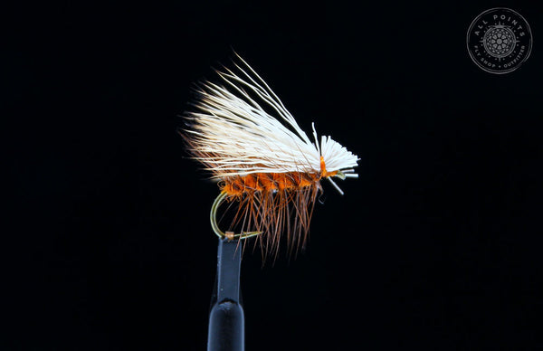 Fly Fishing in Fall in Maine - Maine Fly Fishing