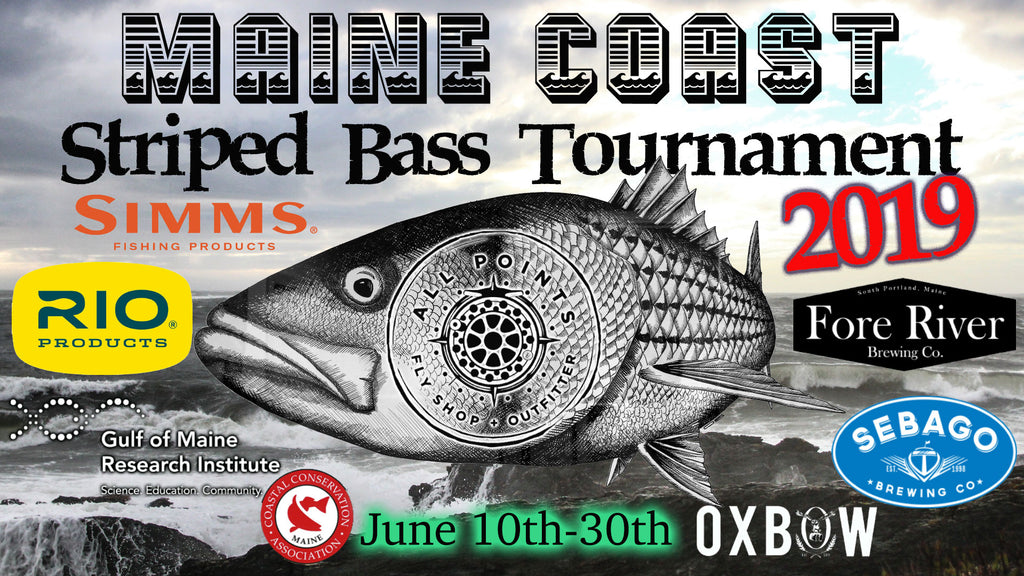 Maine Coast Striped Bass Tournament