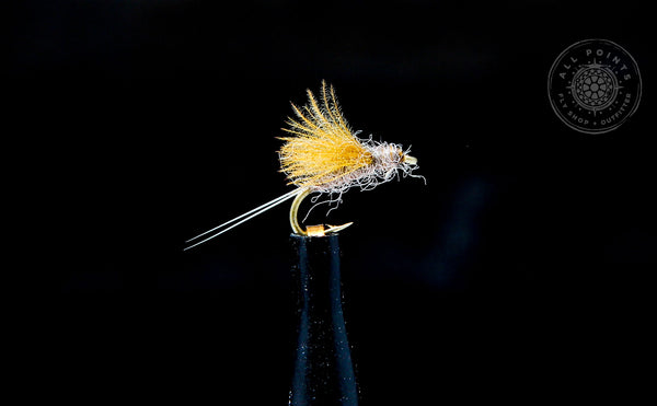 RS2 Fly Pattern - Fall Fishing in Maine