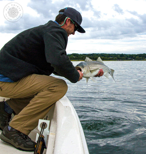 Maine Fly Fishing - Guided