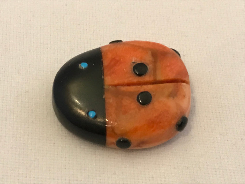 Zuni Animal Fetish Ladybug Carved from Apple Coral by Reynold Lunasee