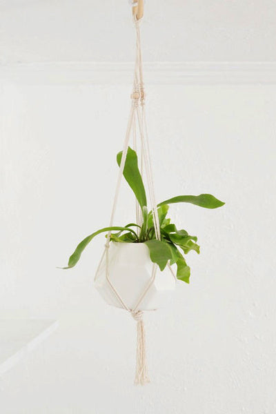 planters - woven hanging