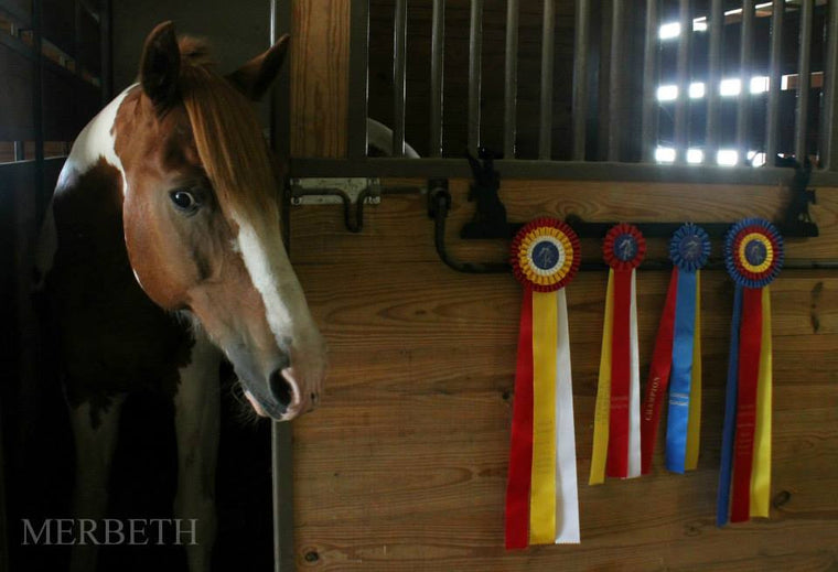 Showoff Ribbon Rack - Reining Horse