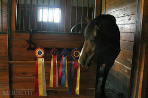 Showoff Ribbon Rack - Jumper - Stall Rack