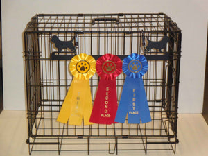 Showoff Ribbon Rack - Petits Bassets Griffon Vendeens - Kennel Rack
