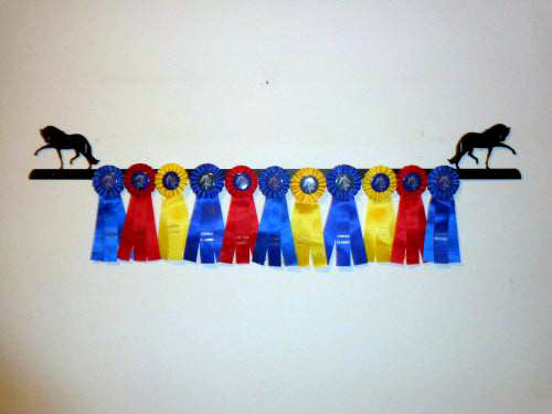 Showoff Ribbon Rack - Andalusian - Wall Rack