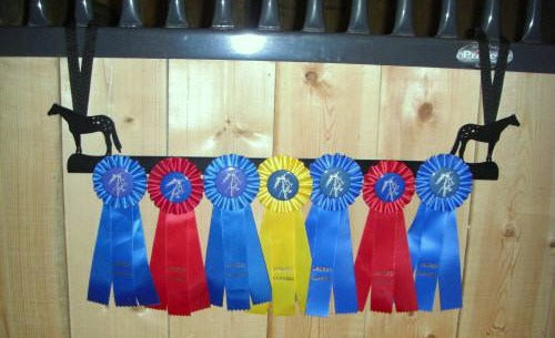 Showoff Ribbon Rack - Appaloosa - Stall Rack