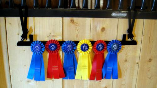 Showoff Ribbon Rack - Barrel Racer - Stall Rack
