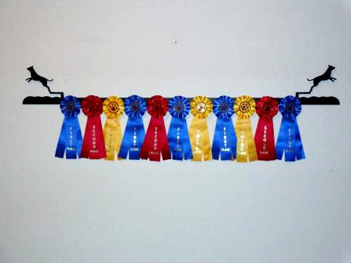 Showoff Ribbon Rack - Dock Dog - Wall Rack