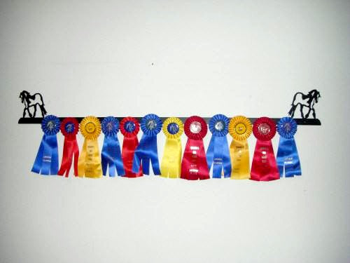 Showoff Ribbon Rack - Gypsy Vanner - Wall Rack