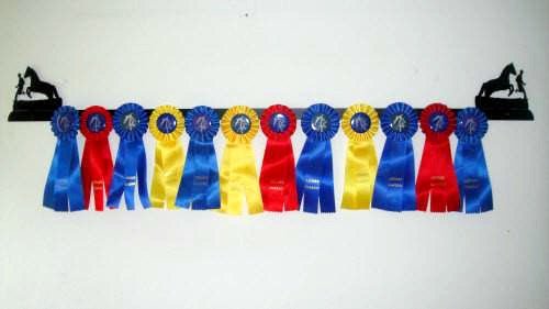 Showoff Ribbon Rack - Natural Horsemanship - Wall Rack
