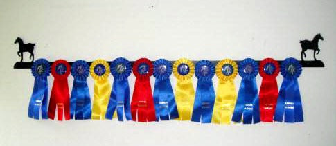 Showoff Ribbon Rack - Percheron - Wall Rack