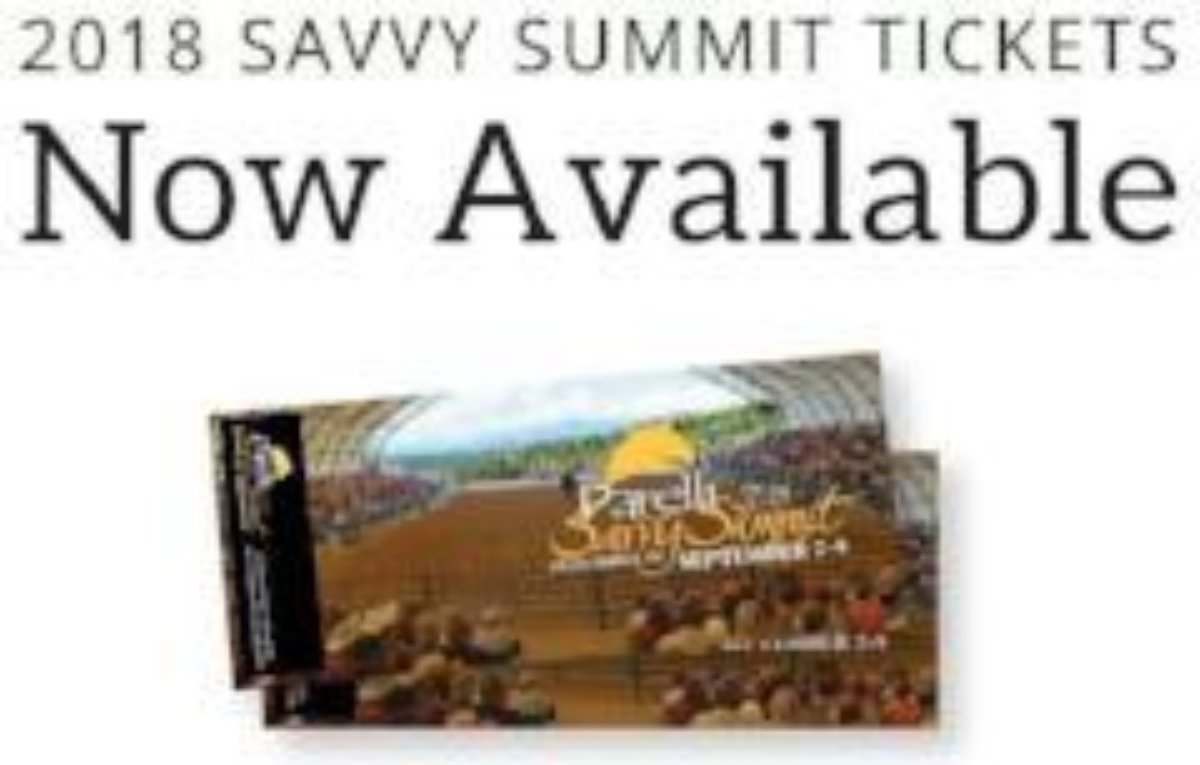2018 Sept 7-9 Summit CO Ticket Regular