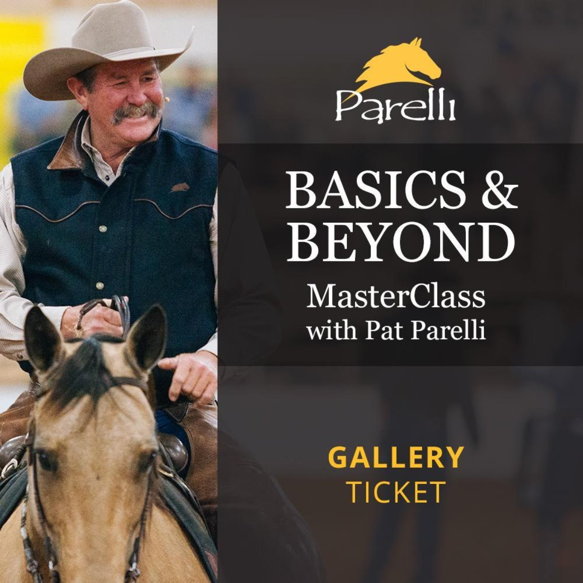 Basics & Beyond Masterclass with Pat Gallery June 22-24, Lynden, WA