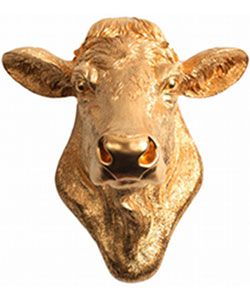 Cow Head Wall Mount