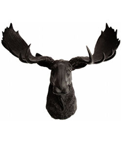 Large Moose Head Wall Mount