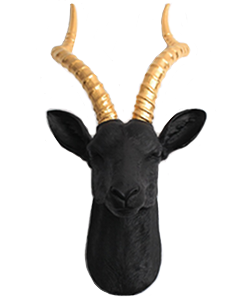 Antelope Head Wall Mount