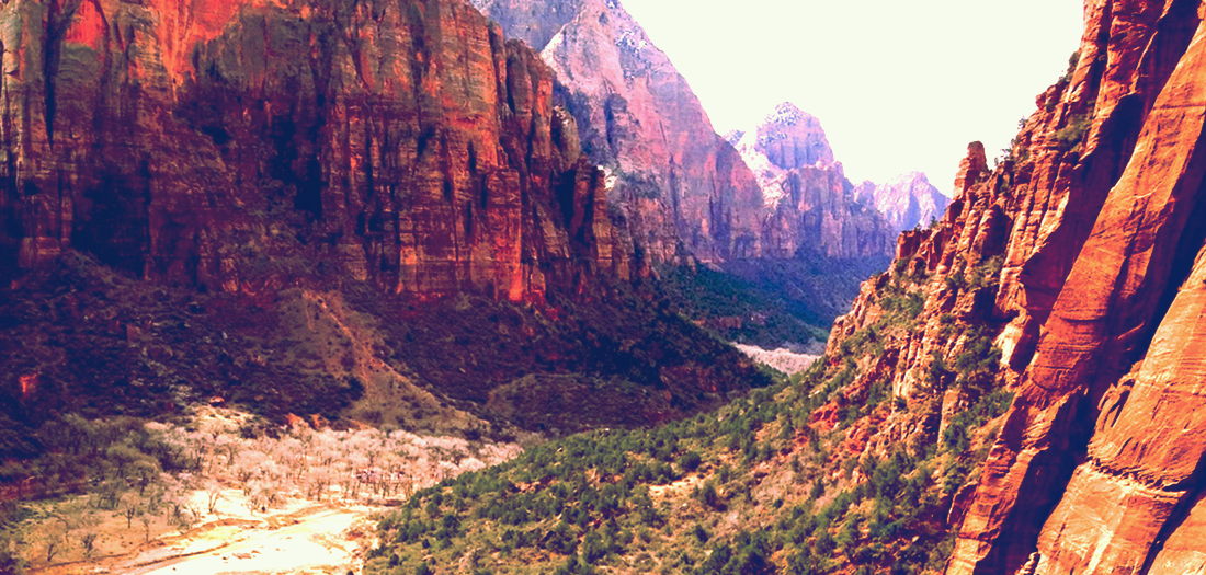 Zions National Park, Angels Landing Hiking Trail, Utah. Copyright 2013