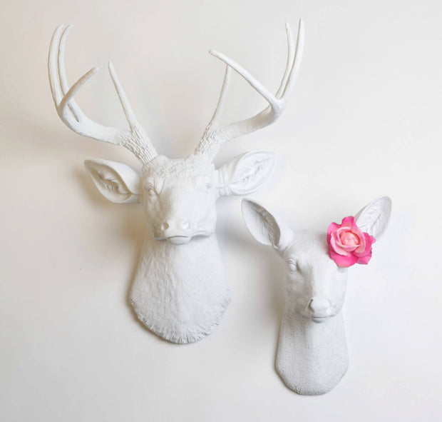 Buck & Doe Set Wall Mount. The Templeton & Ophelia (His and Hers). Note: Rose Not Included.