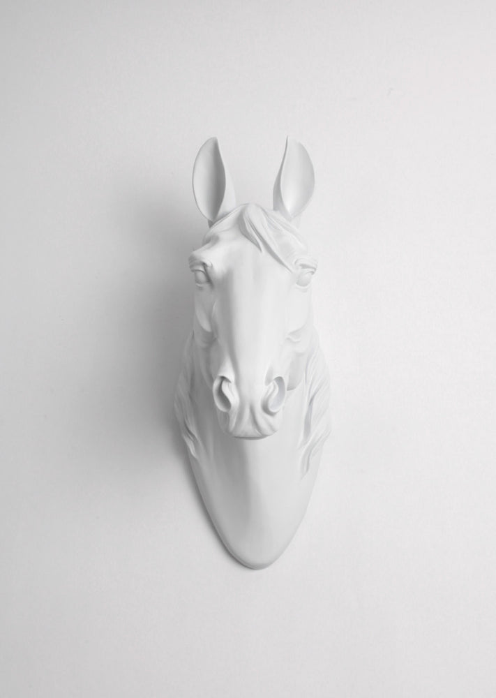 The Daiquiri  | Large Horse Head | Faux Taxidermy | White Resin