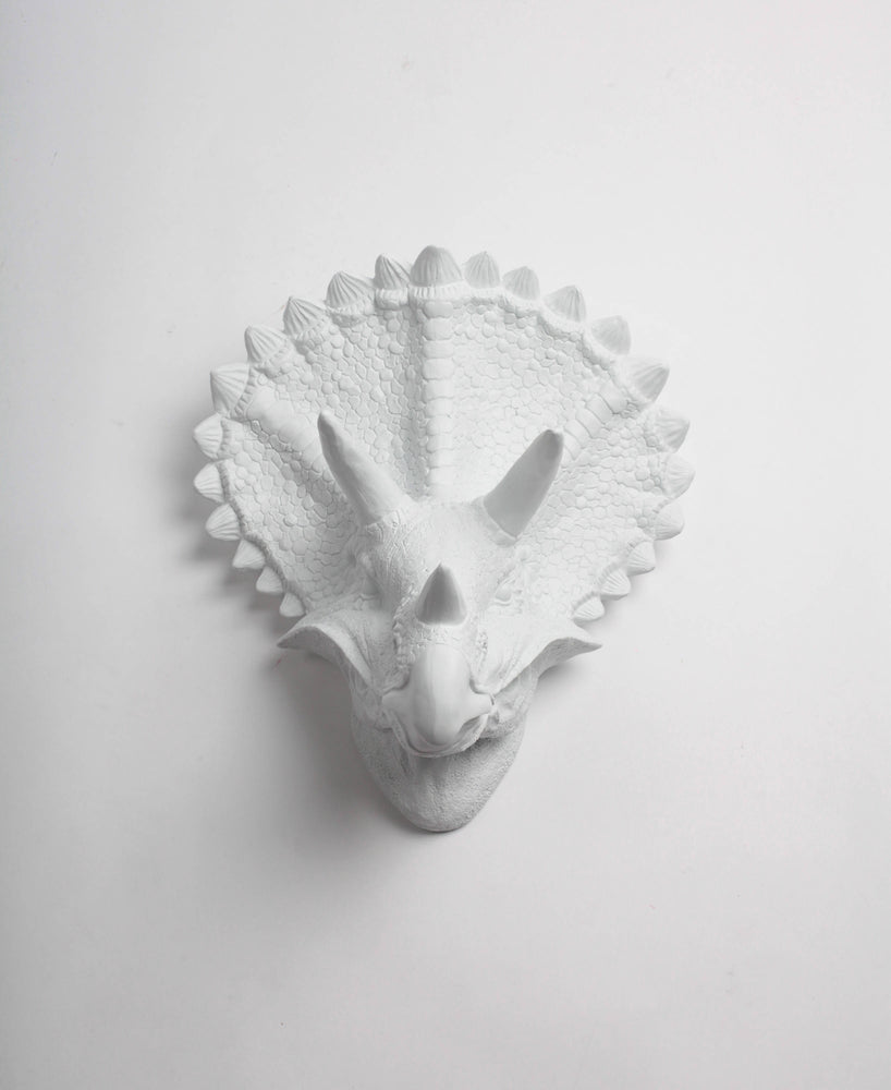 Fake Taxidermy White Triceratops Head Wall Mount