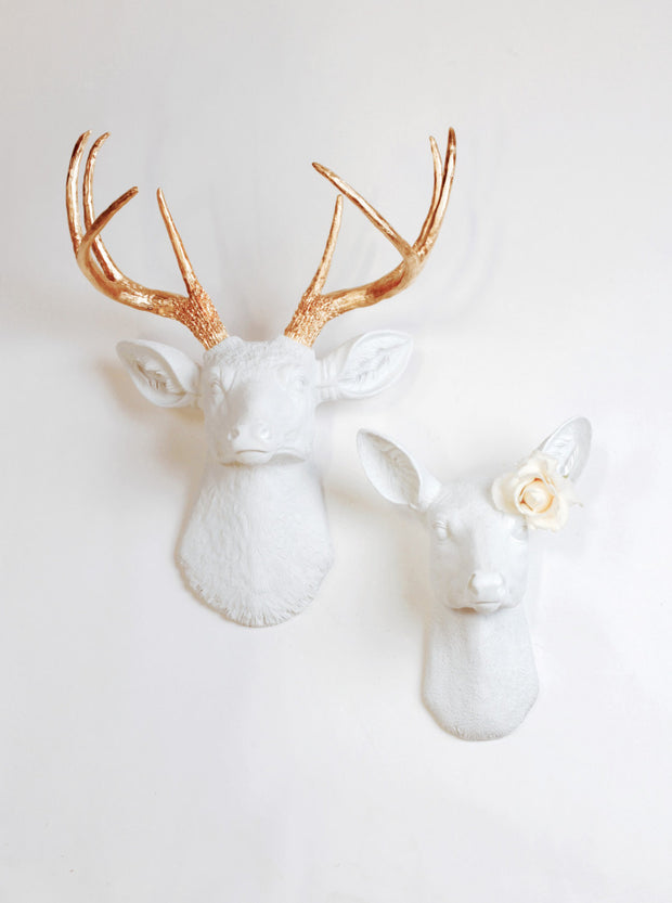 Buck & Doe Set Wall Mount. The Alfred & Ophelia (His and Hers) Stag & Buck Bedroom Wall Decorations. Note: Rose Not Included.
