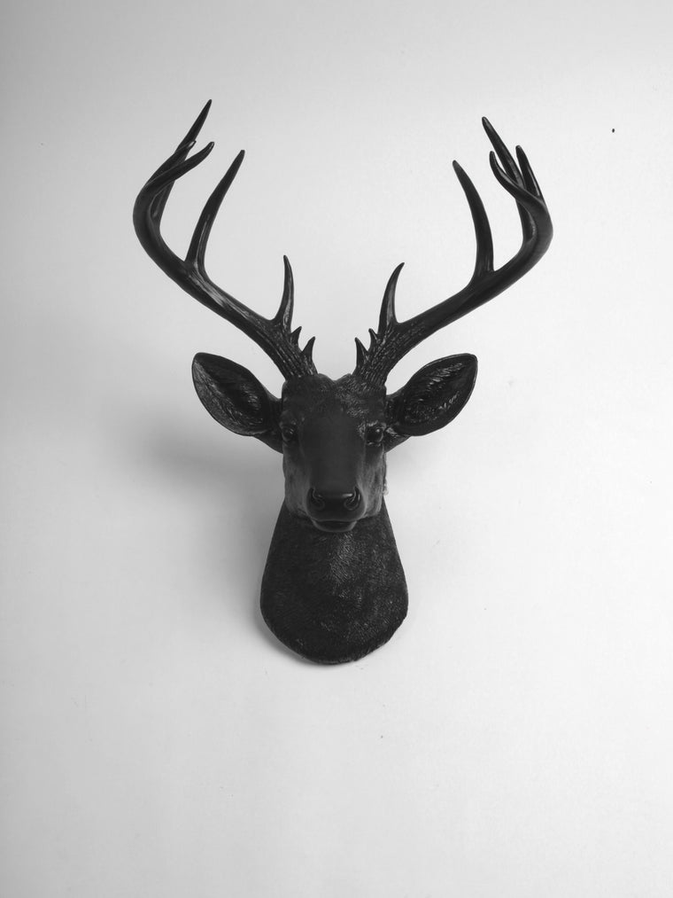 The XL Ignatius, Stag Deer Head Wall Mount, Black Resin