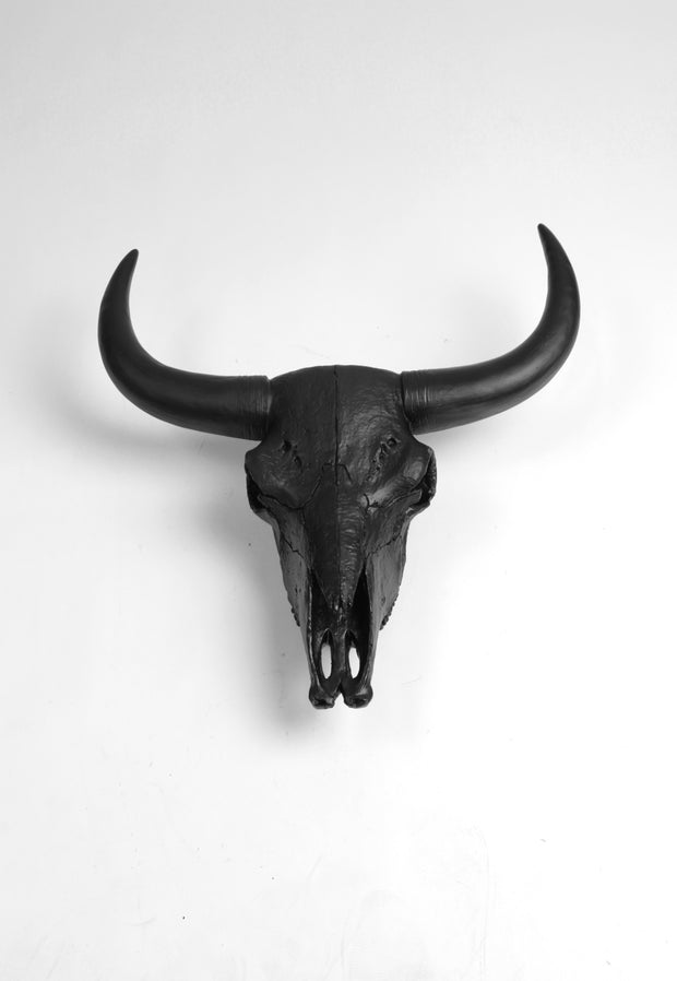 The XL Barnes | Bison Skull Head | Faux Taxidermy | Black Resin