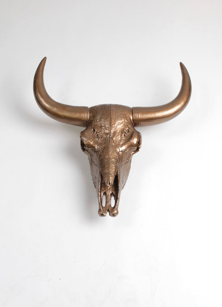 The XL Suntkin | Bison Skull Head | Faux Taxidermy | Bronze Resin