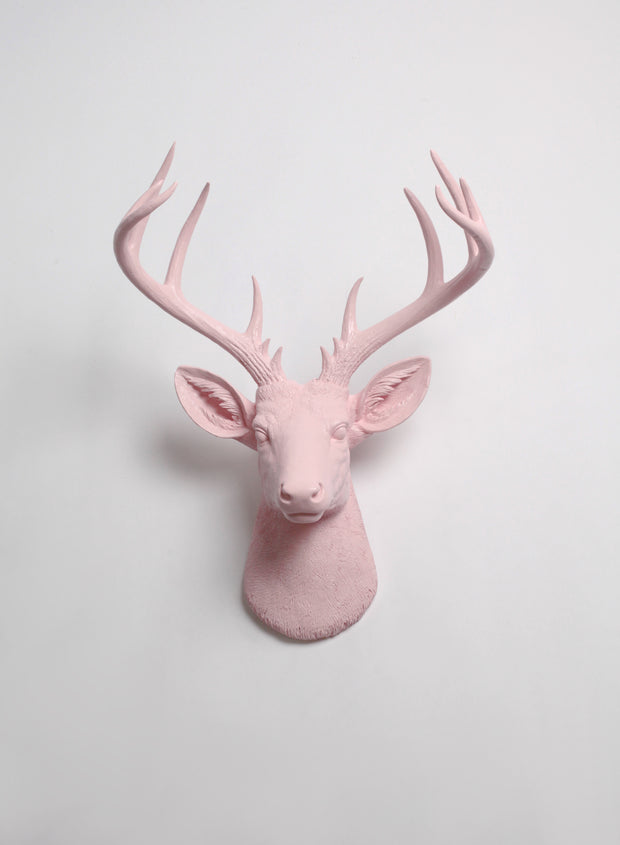 Extra Large Cameo Pink Deer head. Light Blush Pink Stag head Wall Decor