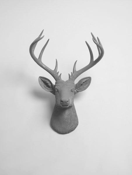 Extra Large Fake Deer Head in Gray