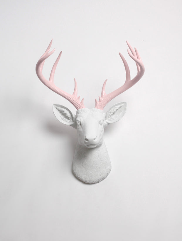 XL Faux Deer Head with Blush Pink Antlers. white Resin XL Deer Head Mount, Cameo Pink Antler Decor