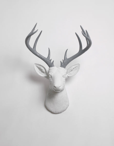 Extra Large White Deer Head with Gray Antlers