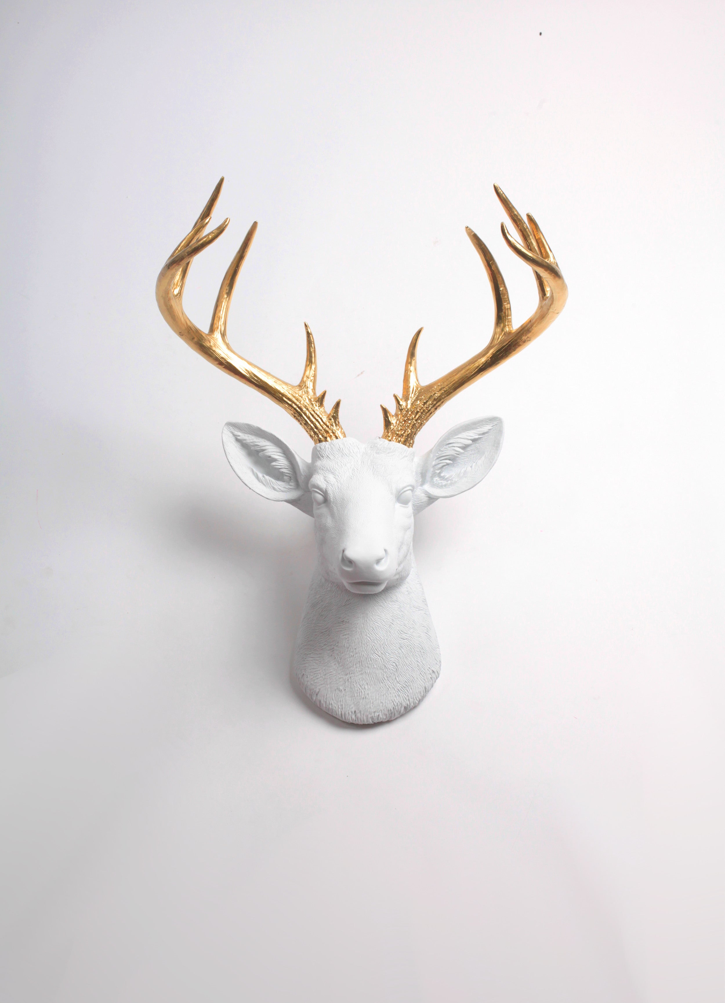 The XL Alfred | Faux Deer Head | Faux Taxidermy | White Resin W/ Gold Antlers